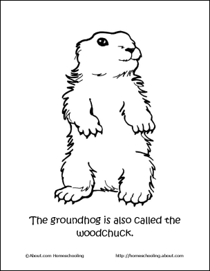 Happy Groundhog's Day Food Art Science Shadows and Ned