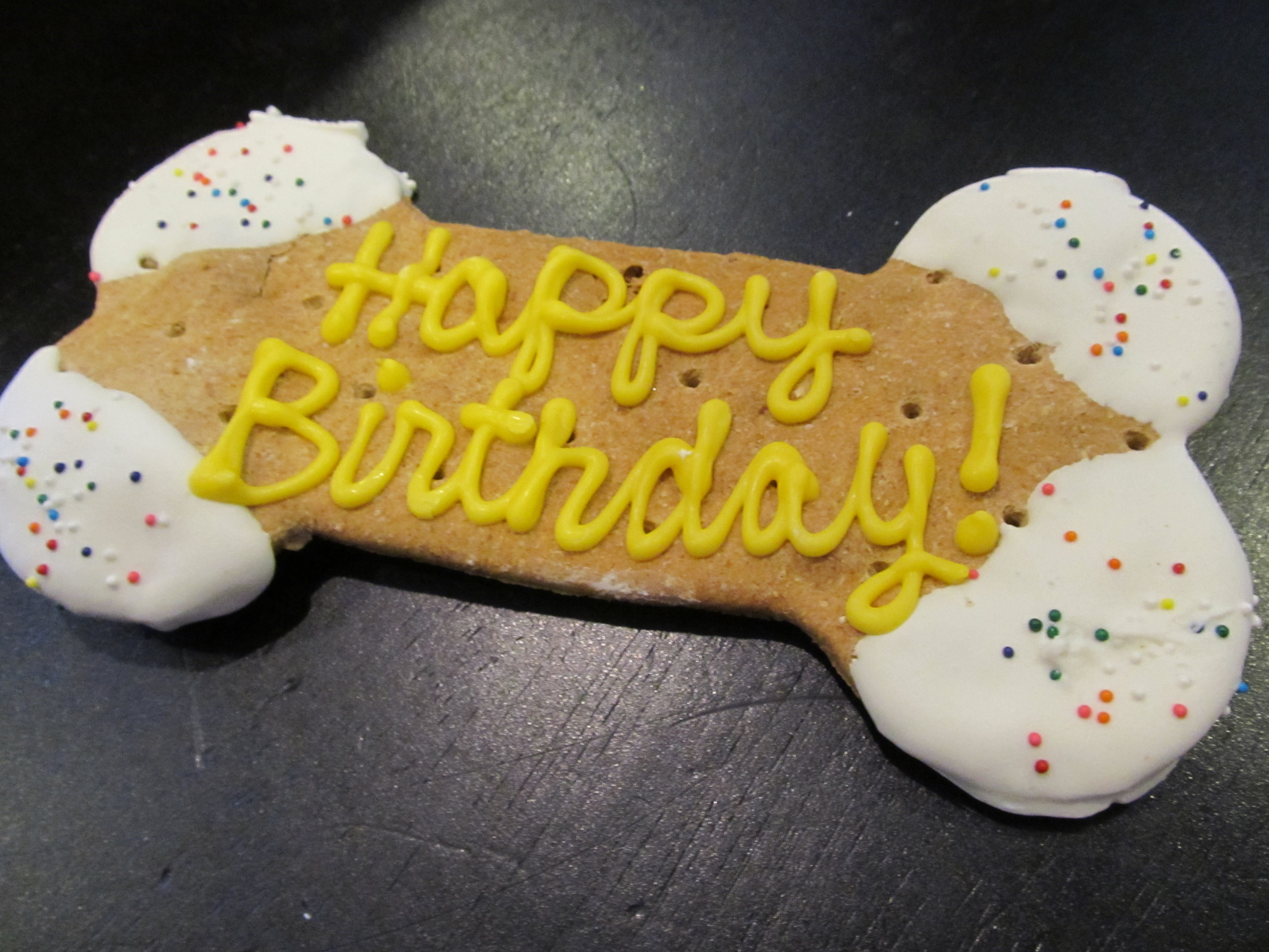 Puppys 1st Birthday Party